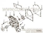 【水泵】康明斯CUMMINS柴油机的4981207 水泵