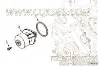 【引擎4BTAA3.9-C125的水泵组】 康明斯矩形密封圈报价,参数及图片