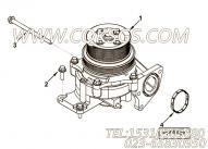 【柴油机QSZ13-C500的水泵组】 康明斯水泵座密封垫报价,参数及图片