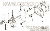 【皮带张紧轮支架】康明斯CUMMINS柴油机的3161566 皮带张紧轮支架