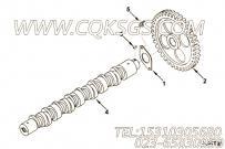【齿轮凸轮轴】康明斯CUMMINS柴油机的3031728 齿轮凸轮轴