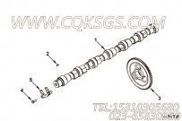 【凸轮轴齿轮】康明斯CUMMINS柴油机的3944298 凸轮轴齿轮
