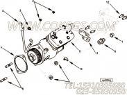 【C3680997】接头体 用在康明斯发动机