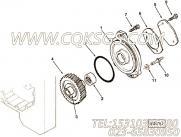 【液压泵支持】康明斯CUMMINS柴油机的3820755 液压泵支持