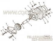 【轴承技术支持】康明斯CUMMINS柴油机的3252682 轴承技术支持