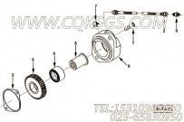 【柔性软管】康明斯CUMMINS柴油机的3920794 柔性软管