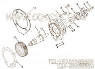 3065177螺栓,用于康明斯NTA855-G4动力性能件组,更多【动力电】配件报价
