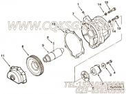 3000175燃油泵传动轴接合爪,用于康明斯KTA19-M470主机燃油泵驱动组,更多【抽沙船用】配件报价