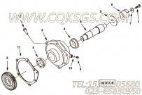 【燃油泵支持】康明斯CUMMINS柴油机的3089102 燃油泵支持