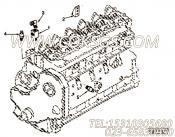 【适配器T形】康明斯CUMMINS柴油机的3278430 适配器T形